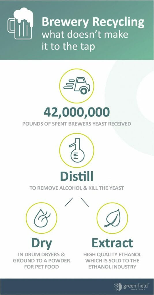 Beer Byproduct Infographic